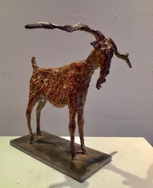 Cheryl Brown, Goat