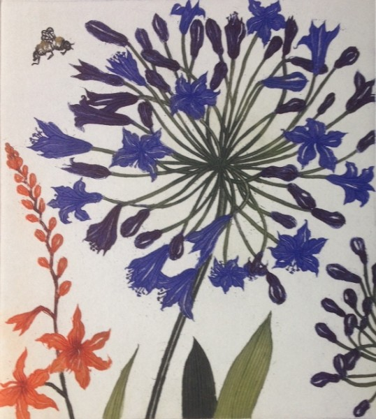 Jean Bardon, Agapanthus Montbretia and A Bee
