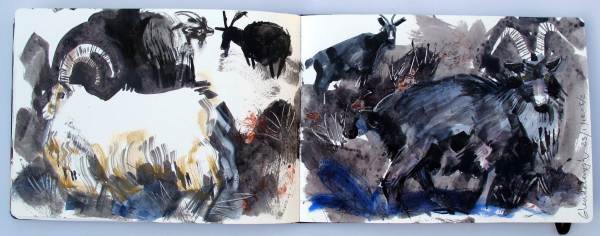 John Short, Sketchbook Study of Goats 2, Glendalough, County Wicklow