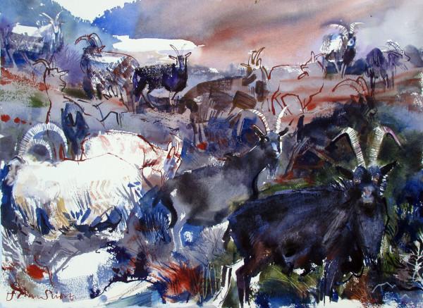 John Short, Wild Goats 1, Glendalough, Co. Wicklow