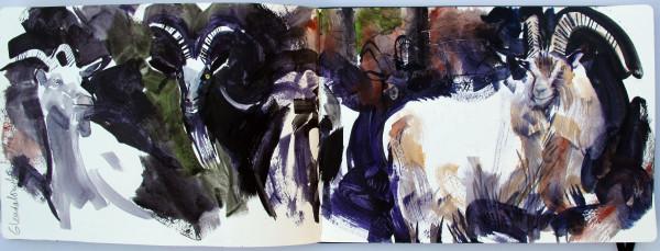 John Short, Sketchbook Study of Goats, Glendalough, County Wicklow