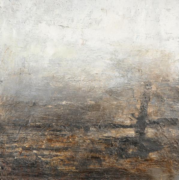 Carol Hodder, Overcast