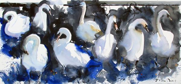 John Short, Swans in Harbour, Bray, co. Wicklow (study)