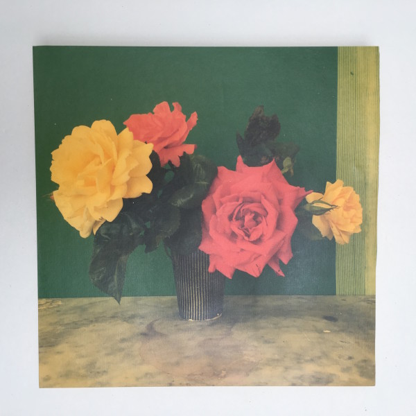 Austin Hearne, Yellow Rose