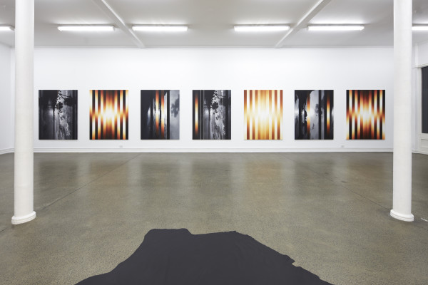 Martin Basher, Installation view, 'Hawaiian Tropic', Starkwhite Auckland, 2017