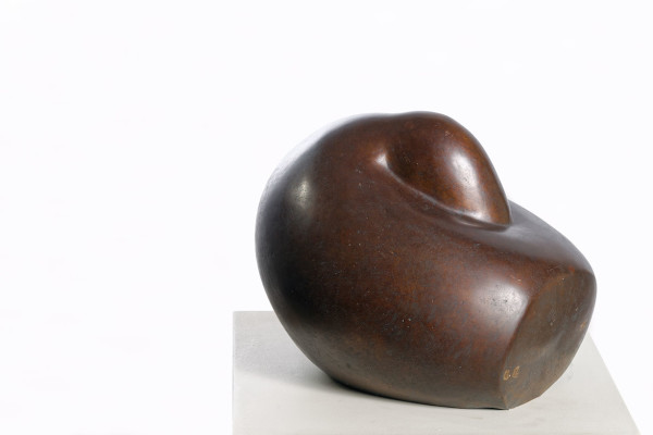 Adam Henein, Sleeping Duck, 2001