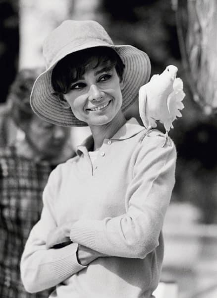 Audrey Hepburn With Dove (view 2), 1966
