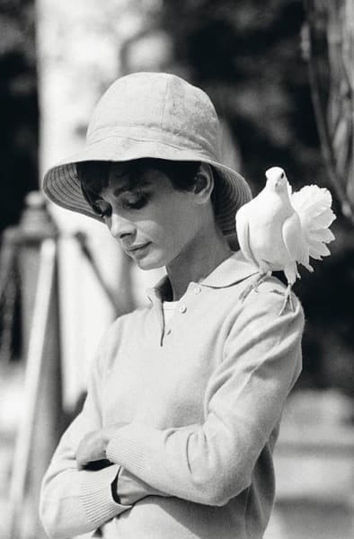 Audrey Hepburn With Dove, 1966