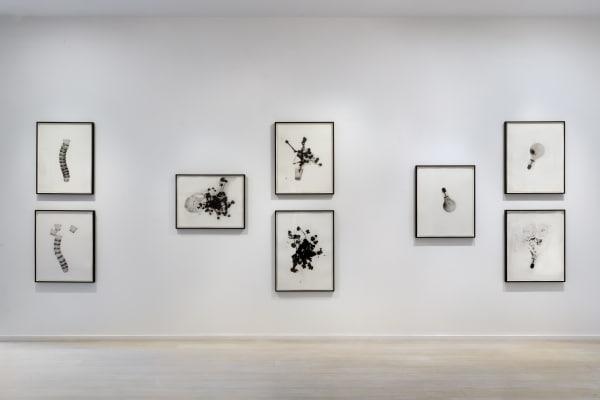 Cornelia Parker | Alan Cristea Gallery