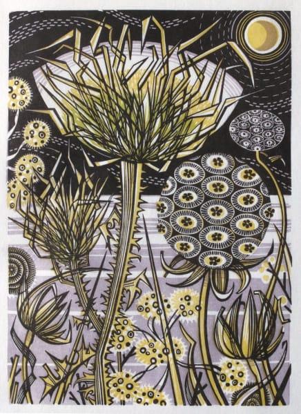 Angie Lewin, Spanish Seedheads