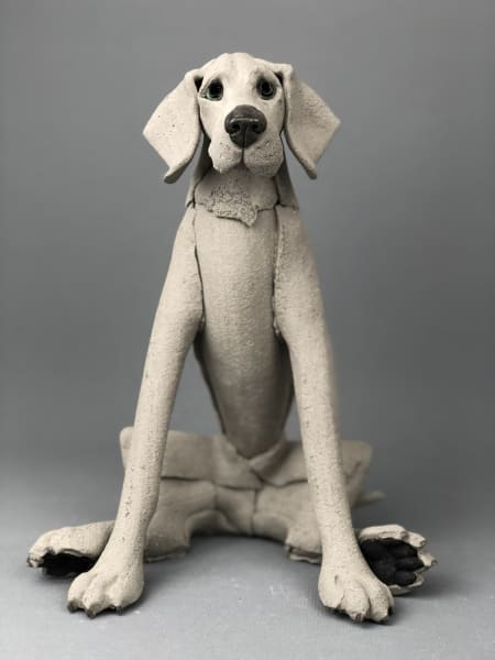 Virginia Dowe Edwards, Lazy Sitting Weimaraner, 2020