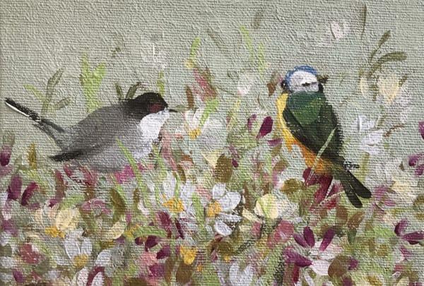 Fletcher Prentice, Garden Birds, 2018