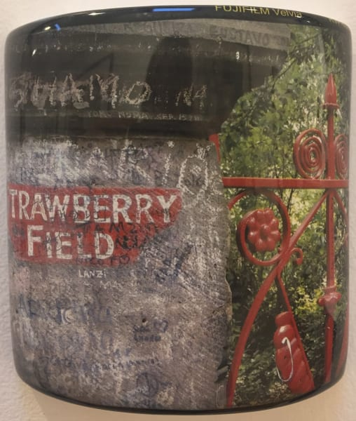 David Rhys Jones, Strawberry Fields