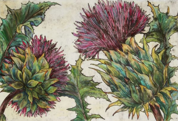 Vicky Oldfield, Cardoon