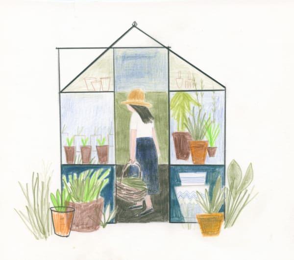 Sarah Lacey, Greenhouse, 2018