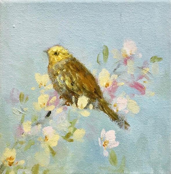 Fletcher Prentice, Song Bird on Blossom, 2019