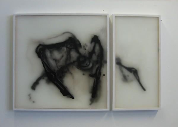 Francesca Schgor, Ragno (nr 2), 2014