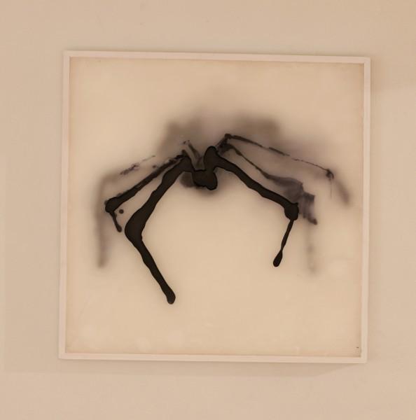 Francesca Schgor, Ragno (nr 3), 2014