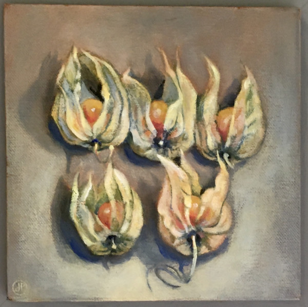 Joyce Pinch, Five Physalis
