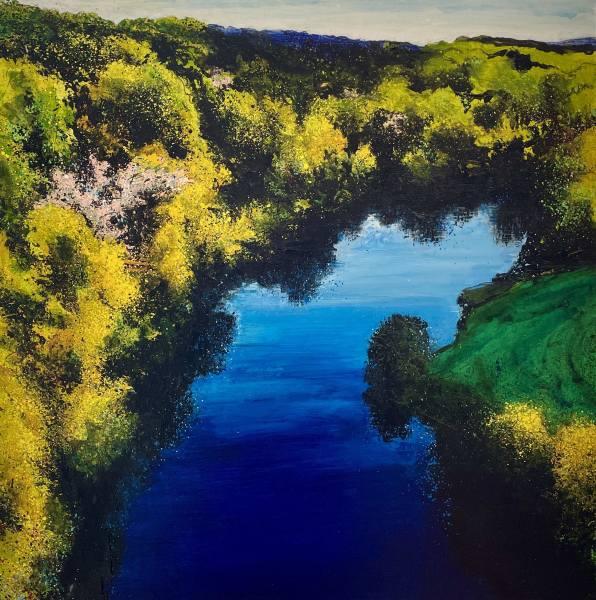 Rob Murray, Aerial Landscape (Arboretum)