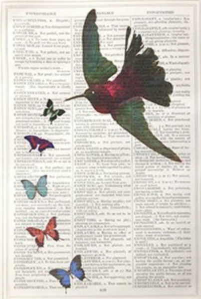 Framed Prints, Hummingbird