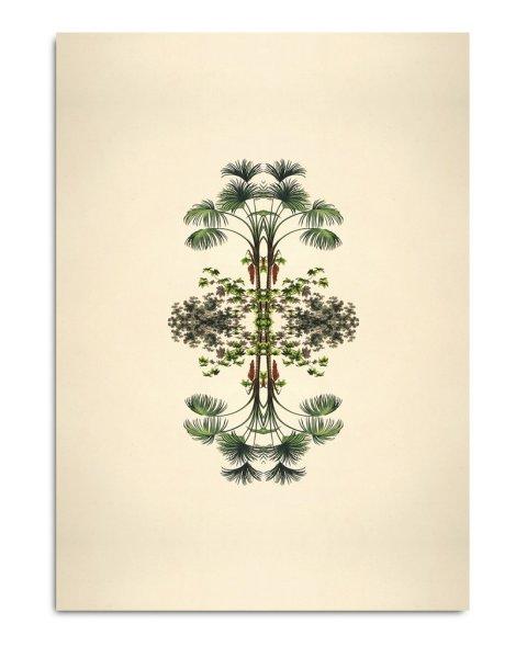 Unframed Prints, Reflections 8802