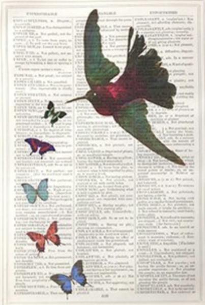 Unframed Prints, Hummingbird