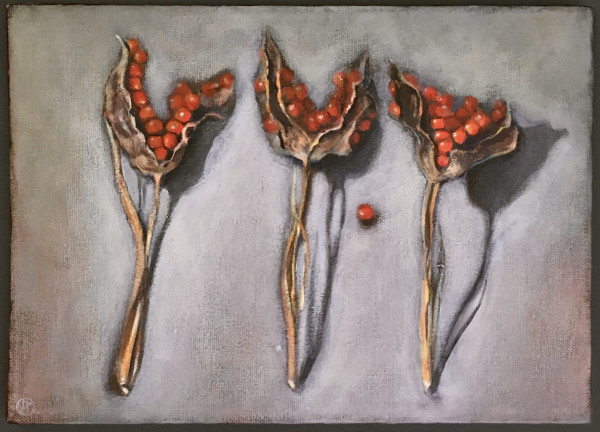 Joyce Pinch, Iris Seed Heads