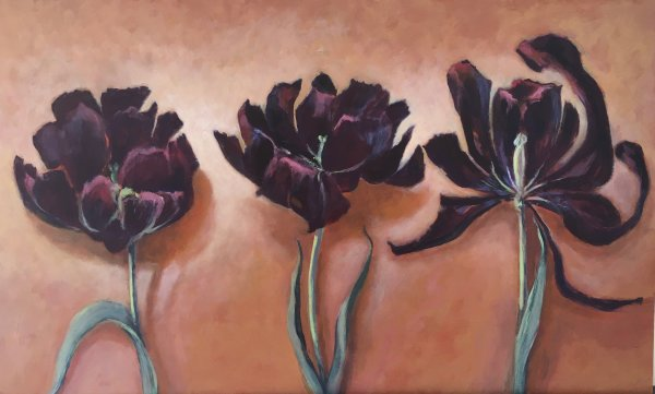 Joyce Pinch, Three Black Hero Tulips