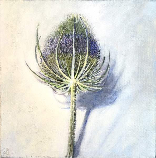Joyce Pinch, Teasel Head