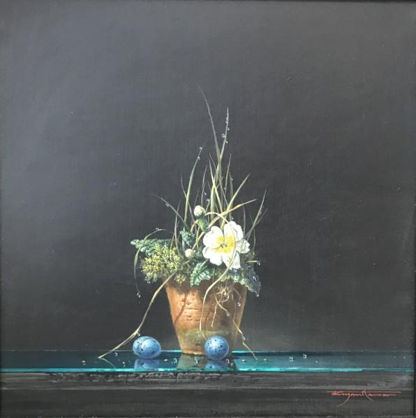 Bryan Hanlon, Primrose and Songthrush Eggs