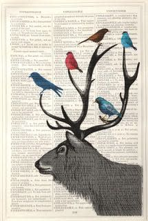 Framed Prints, Stag with Birds