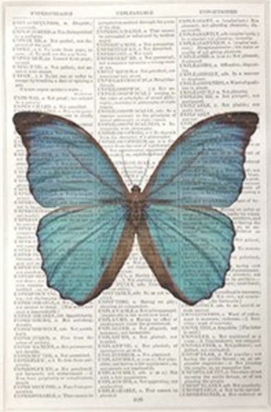 Framed Prints, Blue Butterfly