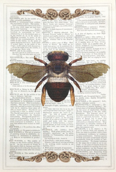 Framed Prints, Bee
