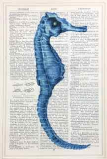 Unframed Prints, Seahorse