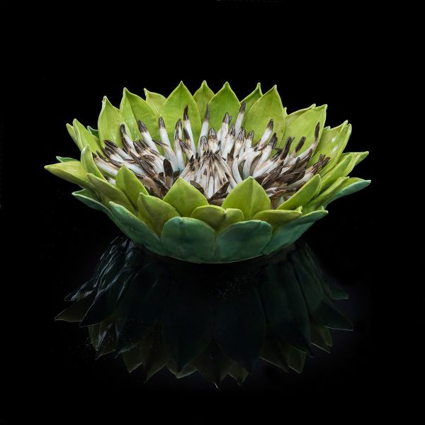 Frances Doherty, Green and White Protea