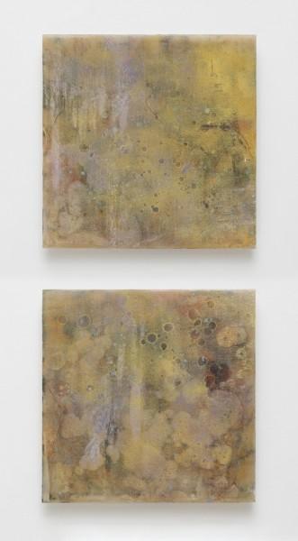 Catharine Newell, Oistres X, 2016