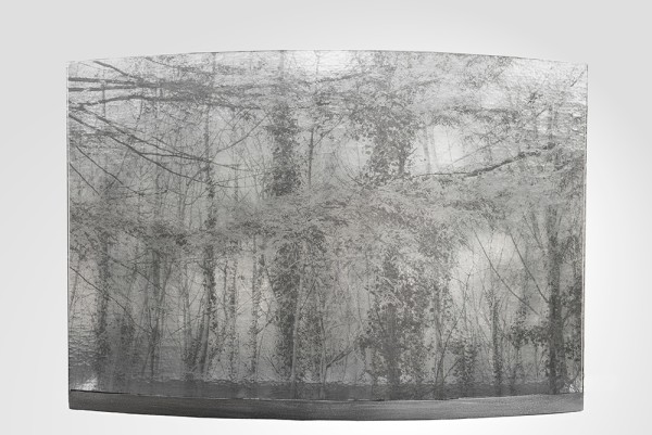 Evy Cohen, The Wood, 2016