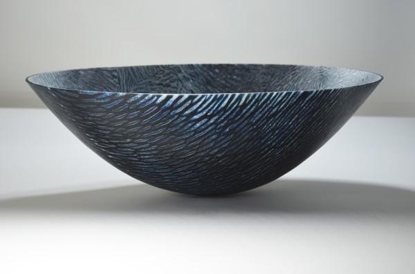 Amanda Simmons, Bird and Bone, 2014