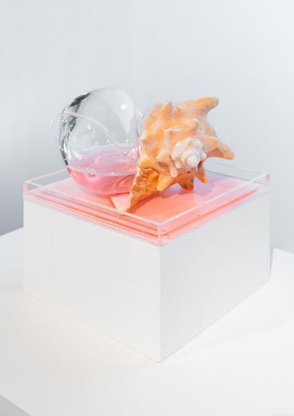 Emily Endo, Neon Venus I (Pink Fountain), 2019