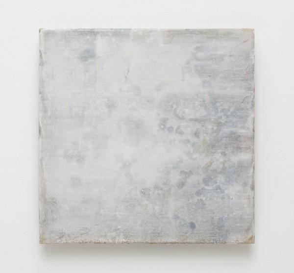 Catharine Newell, Oistres VII, 2016