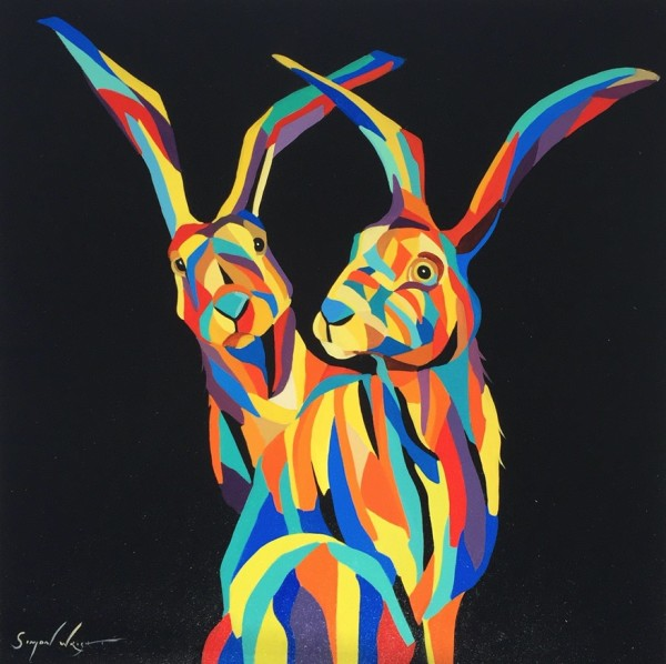 Hares, 2017