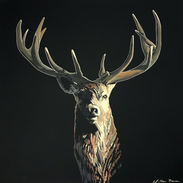 Stag on Black, 2018