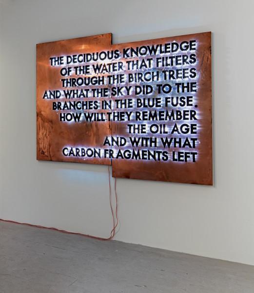 Robert Montgomery, The Deciduous Knowledge, 2016