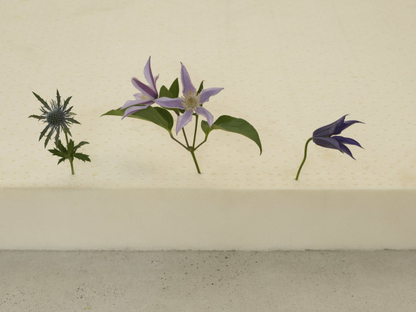 Casper Sejersen, Three Flowers in the Right Order, 2019