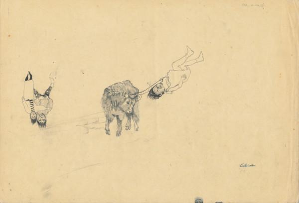 Cat Roissetter, Bull Levitation Study, 2008