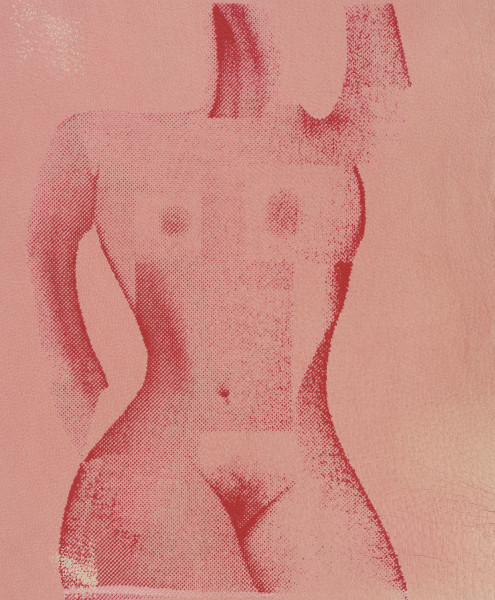 Alba Hodsoll, Ideal Woman II, 2014