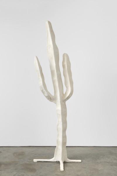 Joe Sweeney, Cacti, 2019