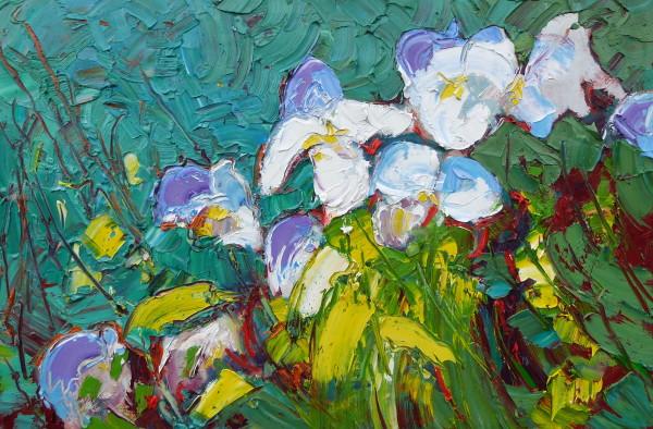 Marc Mylemans, Irissen lila-wit
