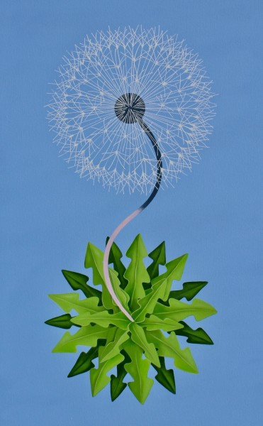 Peter Harrington, New World Dandelion, 2017